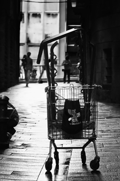the shopping trolley