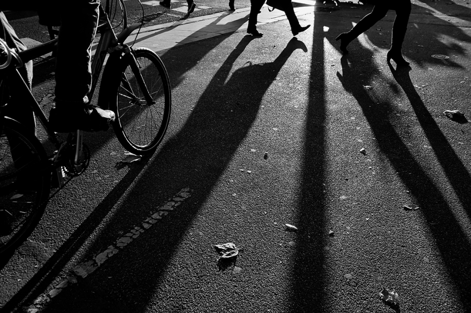 daily shadows
